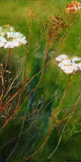 "Queen Ann's Lace, oil on panel, 10""X8', 2012"