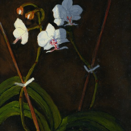 "Orchid 1, oil on panel, 10""X8"", 2005"