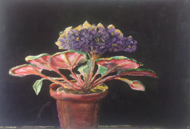 violets watercolor