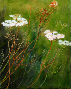 "Queen Anne's Lace, oil on panel, 10""X8"", 2012 SOLD"