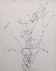 "Calla Lilies, graphite, blind contour drawing, 11.5""X9"", 2004"