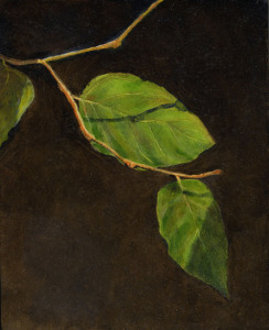 "Leaves, oil on panel, 10""X8"", 2009 SOLD"