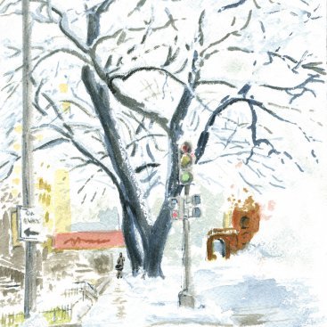 "Elms on New Hampshire Ave, watercolor, 10""X7"", 2010"