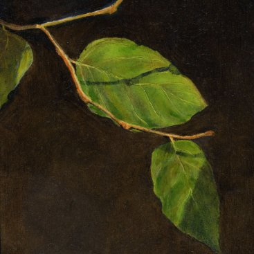 "Leaves, oil on panel, 10""X8"", 2005"
