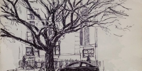 "Elm cut down in street renovation, NHampshire & 21ST ST NW, magic marker, 12""X16"", 2003"
