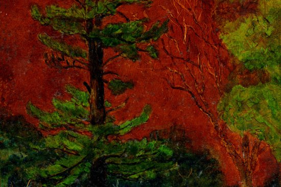 "Eastern White Pine, oil on panel, 10""X8"", 2006"