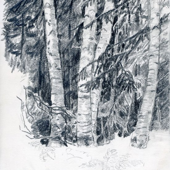 "Along the Salmon River, graphite, 12""X9"", 2010"
