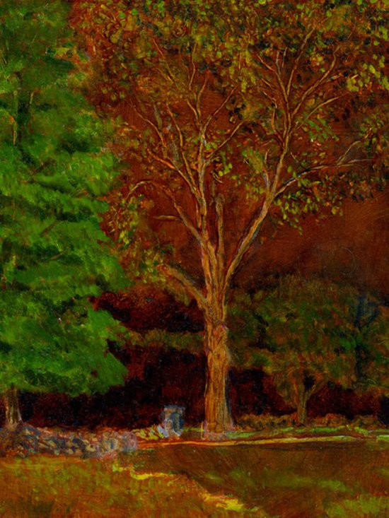 "Old Sugar Maple, oil on panel, 10""X8"", 2006"